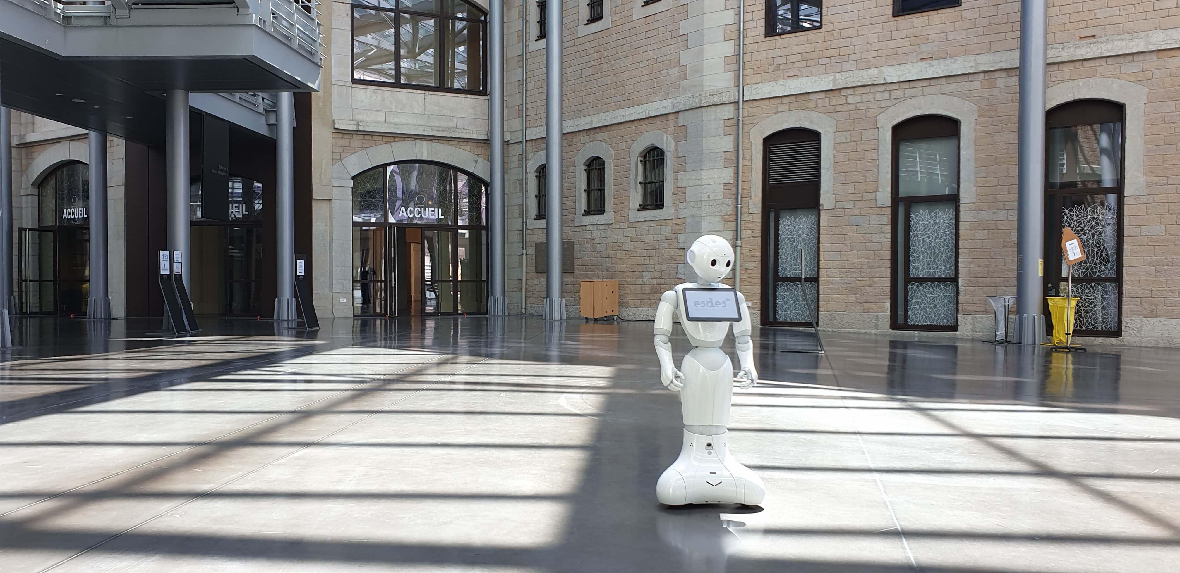 ** Présentation du robot Pepper et de ses possibilités !